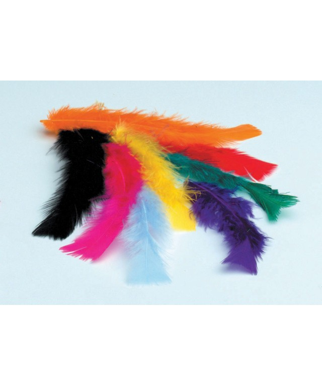 Feathers Assorted