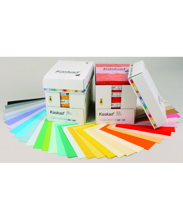 A4 Coloured Copier Card 160gsm - Assorted Deeps